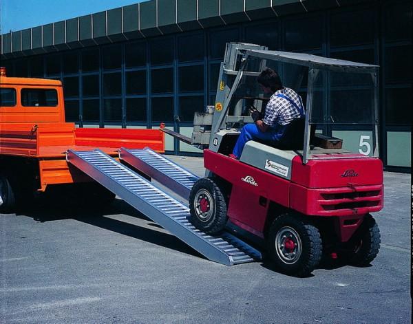 Typ AVS 80 mit Schutzrand